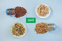 ЯЧМЕНЬ Микрозелень, зерно ячменя органическое для проращивания 200 грамм, фото 1