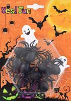 Декор набор пластиковых черных пауков, 10 шт