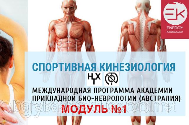 СПОРТИВНАЯ КИНЕЗИОЛОГИЯ МОДУЛЬ №1 (Гипертон-Х1-2, NOT1-2)