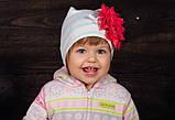 Детская шапка для девочек ПИКОЛА оптом размер 40-42-44, фото 2