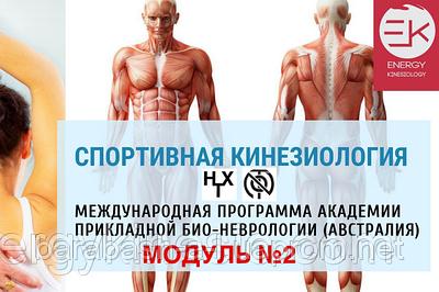 СПОРТИВНАЯ КИНЕЗИОЛОГИЯ МОДУЛЬ №2 (Гипертон-Х 3, NOT 3)