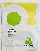 Семена огурца Соната Sonata F1 50 гр, фото 1