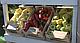 Семена перца Минтос F1 \ Mintos F1 500 семян Syngenta, фото 7