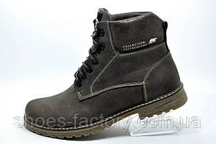 Зимние ботинки из кожи Ботус, мужские (Brown)