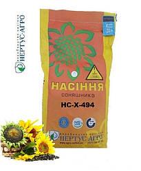 Семена подсолнуха  НС-Х-494 / Насіння соняшнику НС-Х-494  /Нертус/