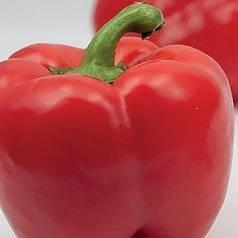 ЕКЛА F1 / EKLA F1, 50 семян — перец сладкий, кубовидный, Syngenta. Агропак.