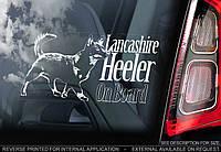 Ланкаширский хилер стикер