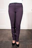 Деловые женские брюки в клетку Жозефина бордо, фото 1