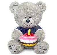 Мягкая игрушка Lava Медвежонок Ники с тортом gLA8786K