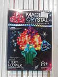 Набор по выращиванию кристаллов Цветок (ОМС-01-08), фото 3
