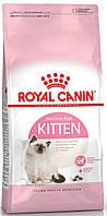 Royal Canin Kitten 36 сухий корм для кошенят до 12 місяців 10КГ