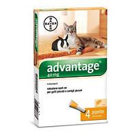 Bayer Адвантейдж 40 для кошек и котят менее 4 кг за 1шт.