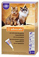 Bayer Адвокат для котів 4-8кг (упаковка 3 піпетки)