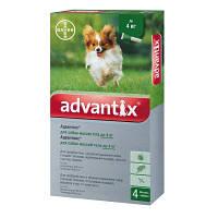 Bayer Advantix для собак до 4кг  (упаковка 4 пипетки)