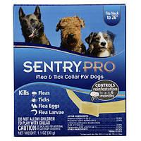 Sentry Pro нашийник від бліх, кліщів, яєць і личинок бліх для собак, 6 місяців захисту