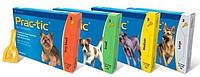 Prac-tic капли для собак весом от 4,5 до 11 кг 1 пипетка