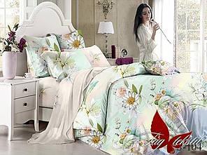 Комплект постельного белья с компаньоном S-104