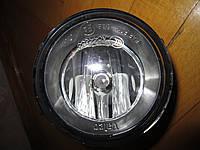 Противотуманные фары  на Nissan, фото 1