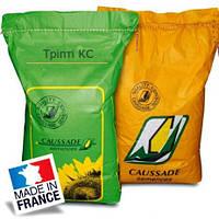 Тріпті КС CAUSSADE (Трипти, Франция) озимий ріпак