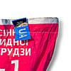 Насіння кукурудзи Дніпровський 181 СВ, фото 2
