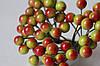 Глянцевые ягоды зеленого цвета с красным бочком (калина) около 50 шт/уп.