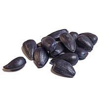Семена подсолнечника Базальт, фото 3