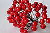 Глянцевые ягоды красного цвета (калина) около 50 шт/уп.