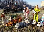 Рождественские вертепы: приятные приготовления к празднику Рождества Христова