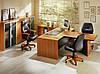 Шкаф офисный для документов Статус Люкс, фото 5