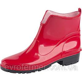 Женские резиновые сапоги Elke красные, Lemigo Польша