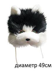 Шапочка кота черная, ТМ Золушка Украина