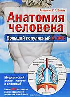 Анатомия человека. Большой популярный атлас Габриэль Билич