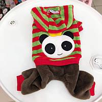 Велюровый костюм- Панда, фото 1