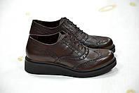 Туфли броги на шнуровке Roberta Lopes -734
