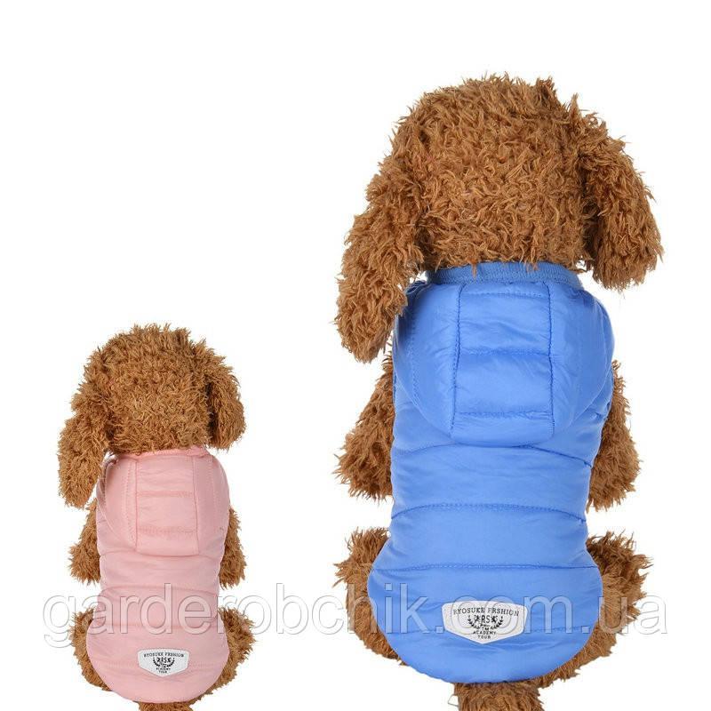 """Жилет демисезонный, куртка  для собаки """"Pink&Blue"""". Одежда для животных"""