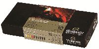 Набор масляных красок REMBRANDT 10*15мл 01820310