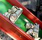 Измельчитель веток с конвейерной лентой, фото 4