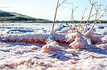 Соль, вода и целебные грязи Сиваш