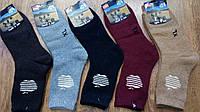 """Чоловічі ангорові махрові шкарпетки""""Camel Aple"""",Монголія,41-44"""