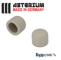 Asterium Германия Заглушка 110