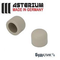 Asterium Германия Заглушка 25