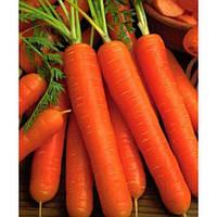 Берликум 2 - морковь, 10 гр., Цезарь - Фасовка