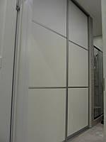 Шкаф купе на заказ Профиль Квадро Z-173