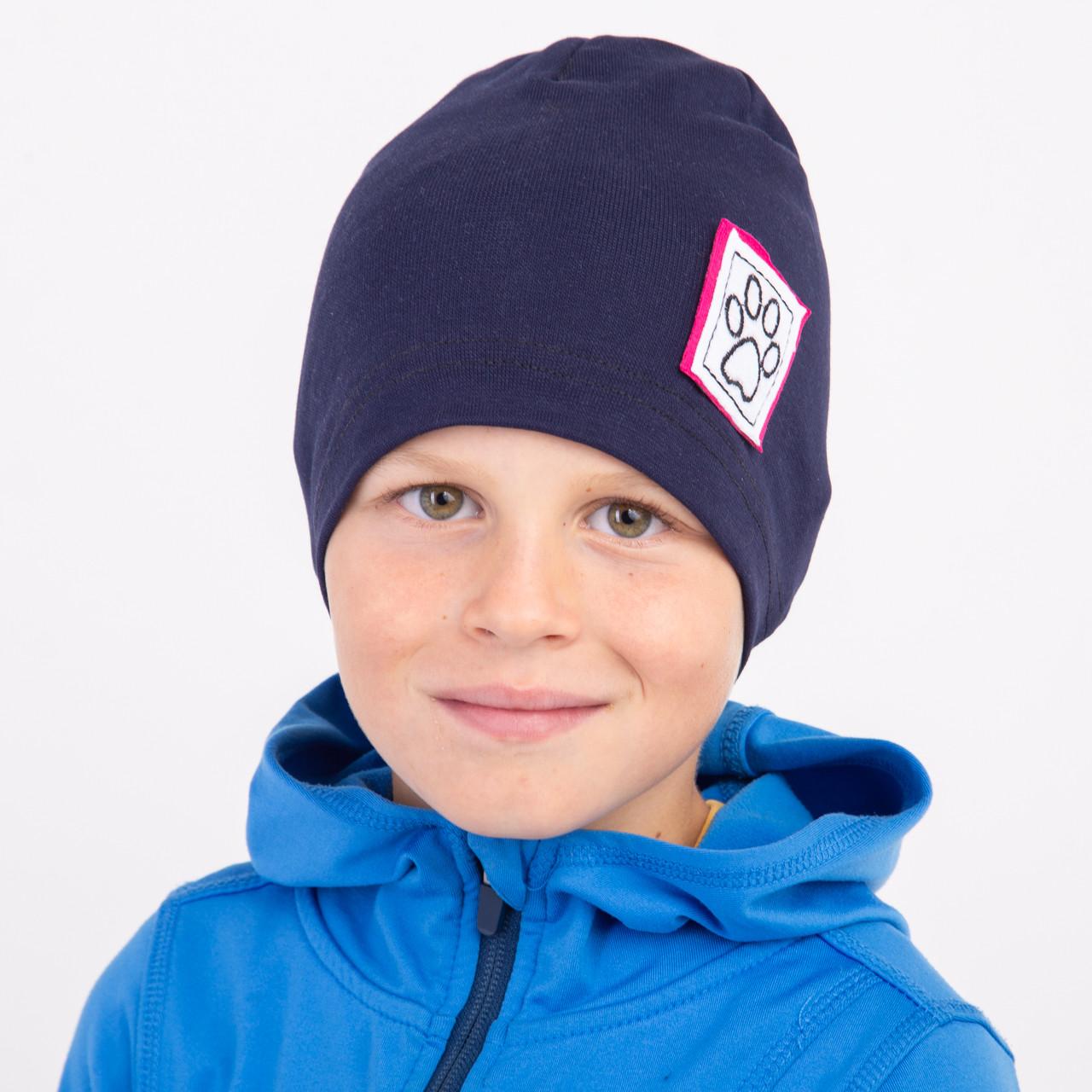 Осенняя шапка для мальчика - Арт 2225
