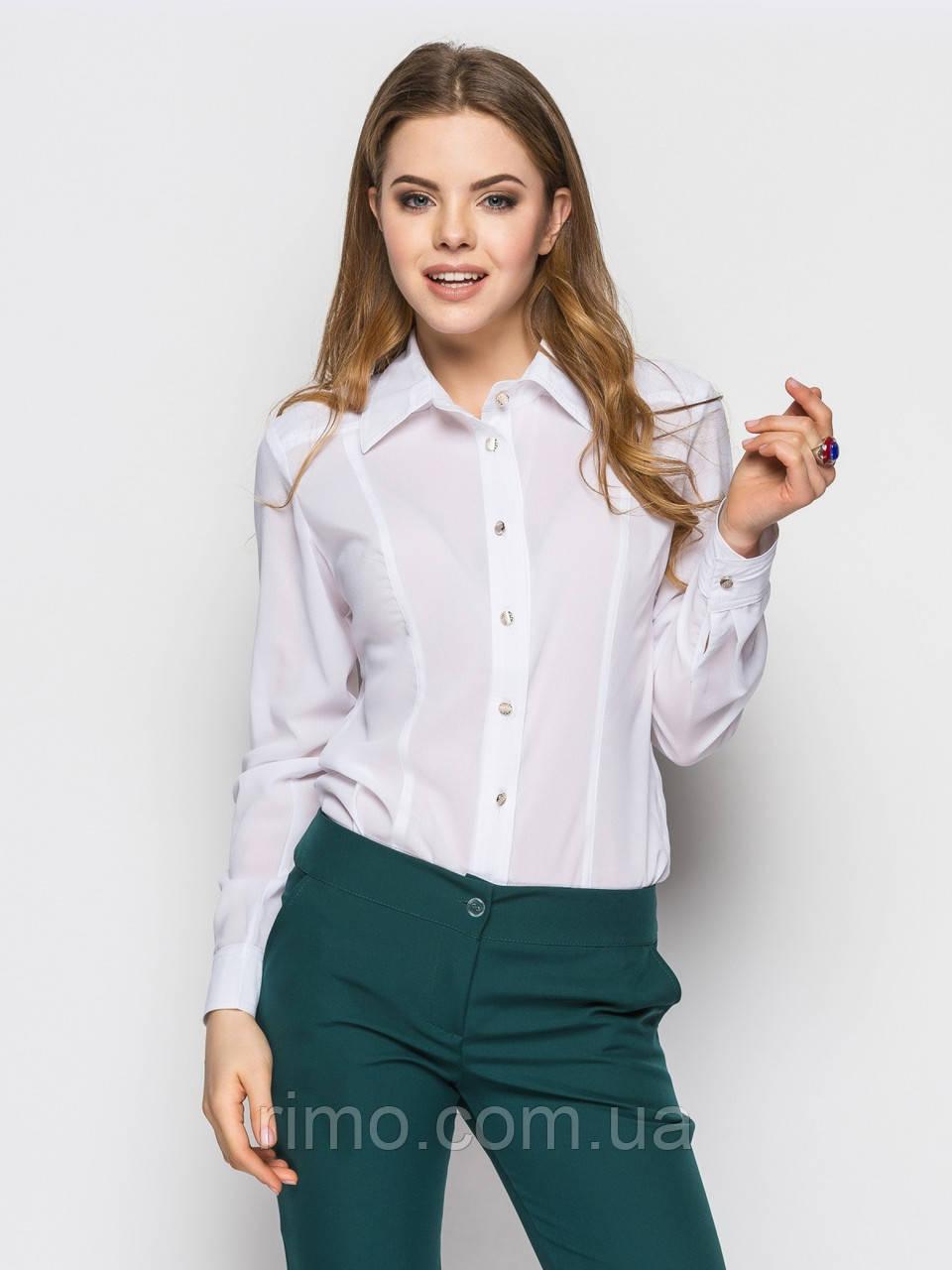 Блуза 337 довгий рукав (3 кольори)
