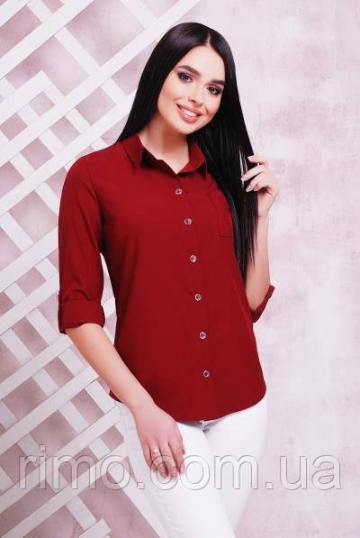 Блуза жіноча 1710 (4 кольори)