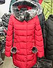 Женская зимняя куртка Fulanxin. L, XL, фото 7