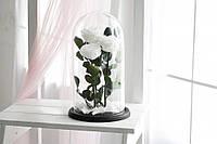 Три розы в стеклянной колбе Белый бриллиант