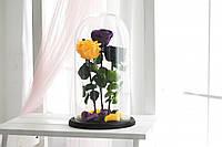 Три розы в стеклянной колбе Фиолетовая, Черная, Желтая.