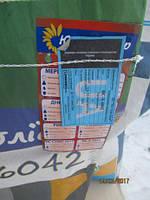 Семена подсолнечника Н-СХ-6042 Юг Агролидер